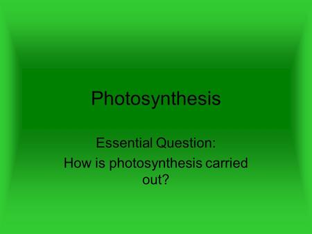 Photosynthesis Essential Question: How is photosynthesis carried out?