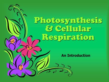 Photosynthesis & Cellular Respiration An Introduction