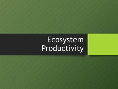 Ecosystem Productivity. Assessment Statements 2.5.2: Describe photosynthesis and respiration in terms of inputs, outputs and energy transformations. 2.5.2: