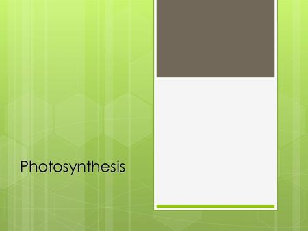 Photosynthesis. Solar panels of life Photosynthesis: The process by which plants and other producers convert sunlight into chemical energy. Photosynthesis: