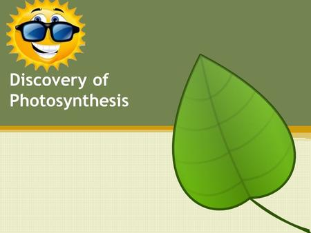 Who First Discovered Photosynthesis?