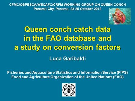 Queen conch catch data in the FAO database and a study on conversion factors Luca Garibaldi Fisheries and Aquaculture Statistics and Information Service.
