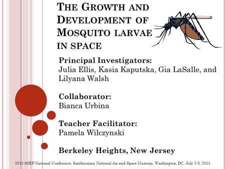 T HE G ROWTH AND D EVELOPMENT OF M OSQUITO LARVAE IN SPACE Principal Investigators: Julia Ellis, Kasia Kaputska, Gia LaSalle, and Lilyana Walsh Collaborator: