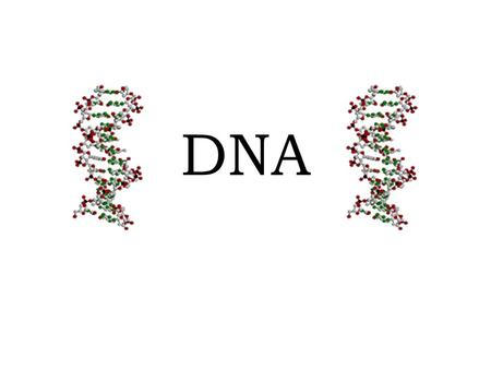 DNA. Nucleic Acids Review – Nucleic acids store and transmit genetic information – Genetic information = instructions for making proteins – Monomers =