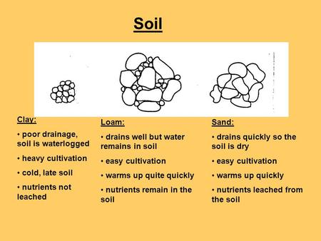 Soil Clay: poor drainage, soil is waterlogged heavy cultivation cold, late soil nutrients not leached Loam: drains well but water remains in soil easy.