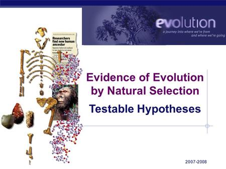 AP Biology 2007-2008 Evidence of Evolution by Natural Selection Testable Hypotheses.