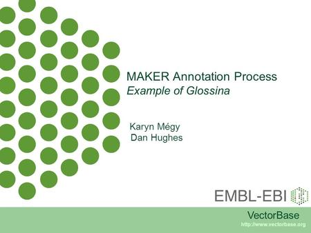 MAKER Annotation Process Example of Glossina VectorBase  Karyn Mégy Dan Hughes.
