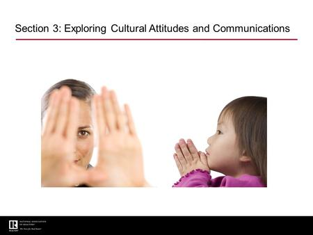 Section 3: Exploring Cultural Attitudes and Communications.