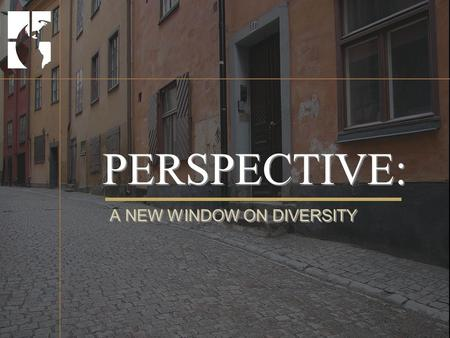 PERSPECTIVE: A NEW WINDOW ON DIVERSITY. Workshop Overview 1.About This Course 2.About Diversity 3.About Humanity 4.About Leverage 5.Building a Diverse.