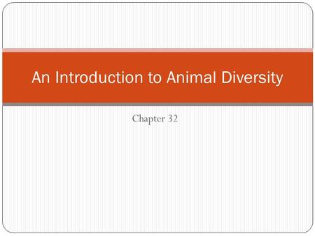 Chapter 32 An Introduction to Animal Diversity. Characteristics of Animals Animals are: Multicellular Heterotrophs Eukaryotic Have tissues and differentiated.