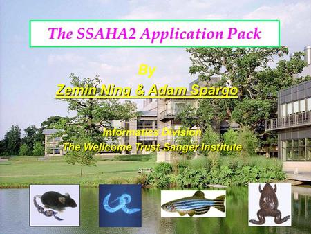 By Zemin Ning & Adam Spargo Informatics Division The Wellcome Trust Sanger Institute The SSAHA2 Application Pack.