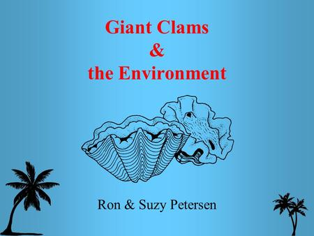 Giant Clams & the Environment Ron & Suzy Petersen.