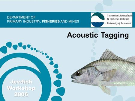 DEPARTMENT OF PRIMARY INDUSTRY, FISHERIES AND MINES Acoustic Tagging.