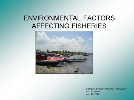 ENVIRONMENTAL FACTORS AFFECTING FISHERIES Fisheries Division, Ministry of Agriculture and Fisheries July 19, 2012.