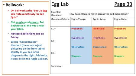 Egg LabPage 33 Essential Question: Question ColumnEgg in VinegarEgg in SyrupEgg in Water L1 – L2 – L3 – Prediction: Hypothesis: Observation: Diagram: Prediction: