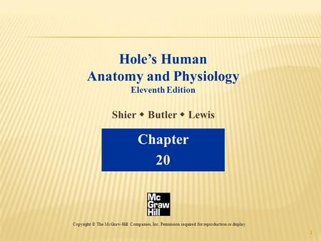1 Hole's Human Anatomy and Physiology Eleventh Edition Shier  Butler  Lewis Chapter 20 Copyright © The McGraw-Hill Companies, Inc. Permission required.