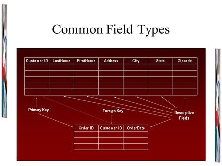 Common Field Types Primary Key Descriptive Fields Foreign Key.