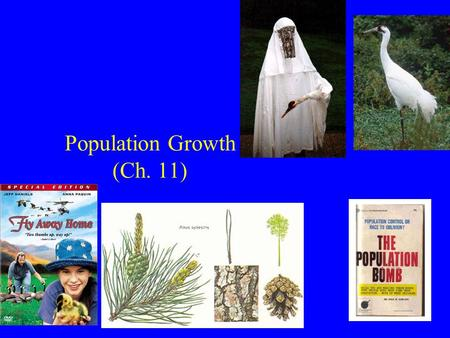 Population Growth (Ch. 11). Population Growth 1) Geometric growth 2) Exponential growth 3) Logistic growth.