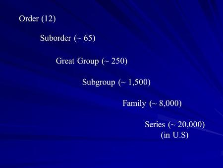 Order (12) Suborder (~ 65) Family (~ 8,000) Great Group (~ 250) Subgroup (~ 1,500) Series (~ 20,000) (in U.S)