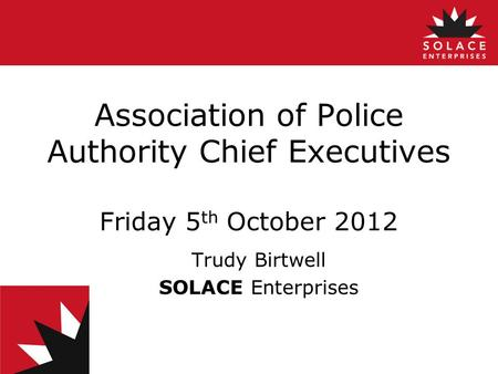 Association of Police Authority Chief Executives Friday 5 th October 2012 Trudy Birtwell SOLACE Enterprises.