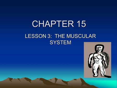 CHAPTER 15 LESSON 3: THE MUSCULAR SYSTEM. FUNCTIONS OF THE MUSCLES All movement Pump blood throughout the body (HEART) Move food thru digestive system.