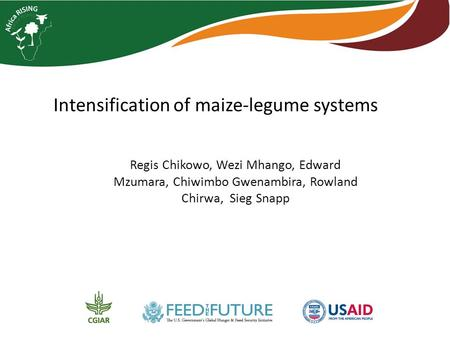 Intensification of maize-legume systems