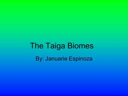 The Taiga Biomes By: Januarie Espinoza Physical Description The Taiga Biome is the LARGEST terrestrial biome on the earth. It has many features such.