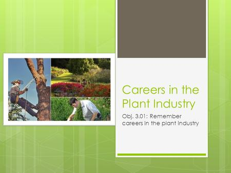 Careers in the Plant Industry Obj. 3.01: Remember careers in the plant industry.