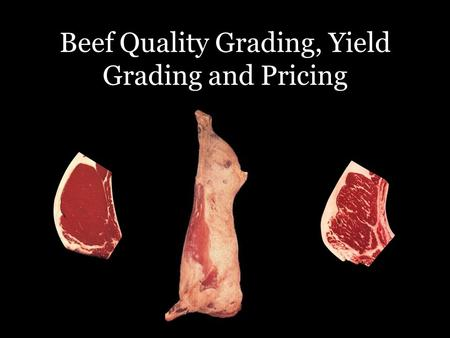 Beef Quality Grading, Yield Grading and Pricing. Slaughter By-Products ($/cwt) $66/cwt$109/cwt Fab/Processing Credit Items: Fat $8.50/cwt Bone $5/cwt.