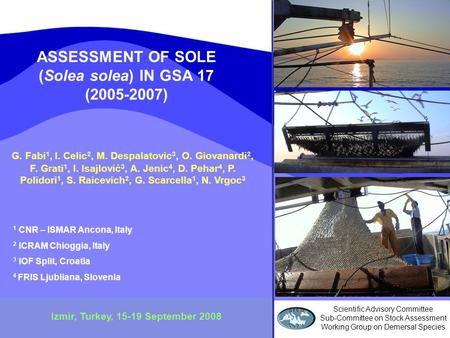 ASSESSMENT OF SOLE (Solea solea) IN GSA 17 (2005-2007) Izmir, Turkey, 15-19 September 2008 G. Fabi 1, I. Celic 2, M. Despalatovic 3, O. Giovanardi 2, F.