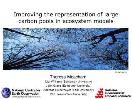 Improving the representation of large carbon pools in ecosystem models Mat Williams (Edinburgh University) John Grace (Edinburgh University) Andreas Heinemeyer.