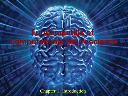 0 Chapter 1: Introduction Fundamentals of Computational Neuroscience Dec 09.