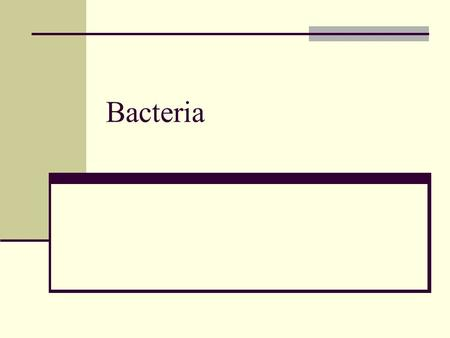 Bacteria. Bacteria differ from Eukaryotes No nucleus or membrane bound organelles 10 times smaller Unicellular, activities not specialized Single chromosome.