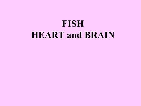 FISH HEART and BRAIN. This brain part is the _____________ It controls _____________________ Medulla oblongata Internal organs that work without thinking.