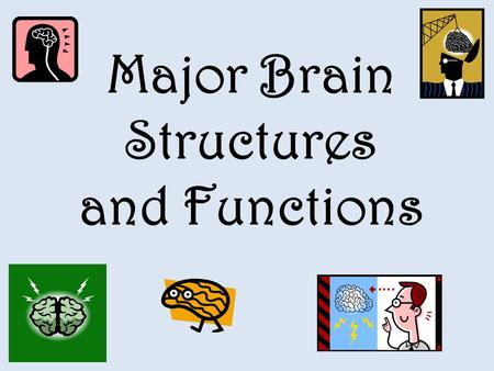 Major Brain Structures and Functions
