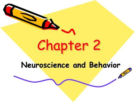 Chapter 2 Neuroscience and Behavior. Biological Psychology The study of the links between biology and behavior.