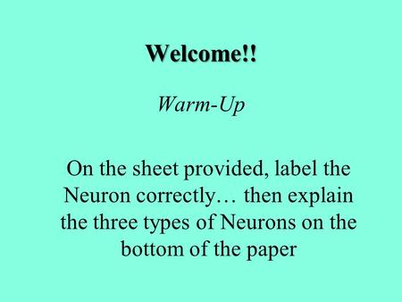 Welcome!! Warm-Up On the sheet provided, label the Neuron correctly… then explain the three types of Neurons on the bottom of the paper.