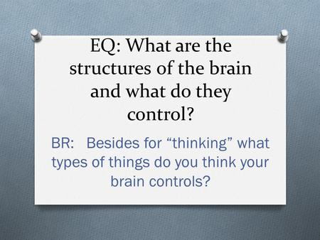 "EQ: What are the structures of the brain and what do they control? BR: Besides for ""thinking"" what types of things do you think your brain controls?"