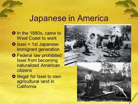 Japanese in America  In the 1880s, came to West Coast to work  Issei = 1st Japanese immigrant generation  Federal law prohibited Issei from becoming.