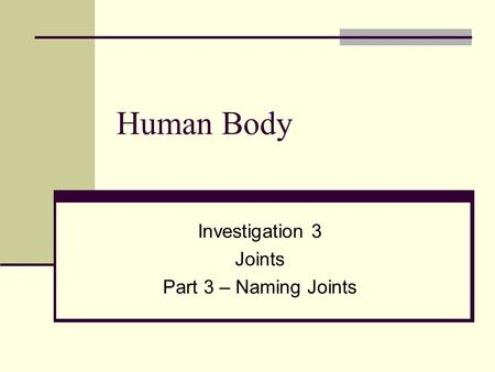 Human Body Investigation 3 Joints Part 3 – Naming Joints.