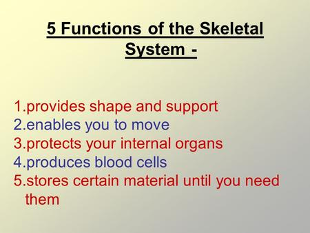 5 Functions of the Skeletal System - 1.provides shape and support 2.enables you to move 3.protects your internal organs 4.produces blood cells 5.stores.