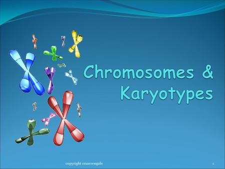1copyright cmassengale. Chromosomes 2 Chromosome Number All cells in the human body (SOMATIC CELLS) have 46 or 23 pairs of chromosomes Called the DIPLOID.