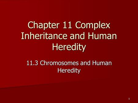 1 Chapter 11 Complex Inheritance and Human Heredity 11.3 Chromosomes and Human Heredity.