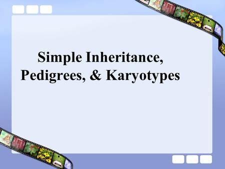 Simple Inheritance, Pedigrees, & Karyotypes Pedigrees Similar to family trees graphicA graphic representation of genetic inheritance.