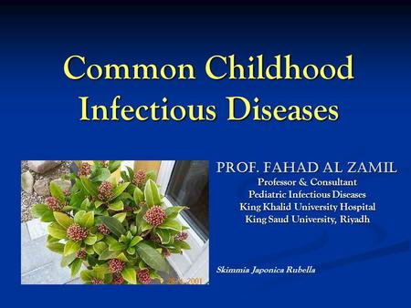 Common Childhood Infectious Diseases