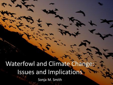 Waterfowl and Climate Change: Issues and Implications Sonja M. Smith.
