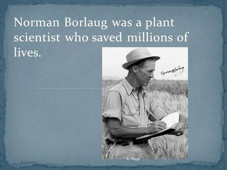 Norman Borlaug was a plant scientist who saved millions of lives. E. Napp.