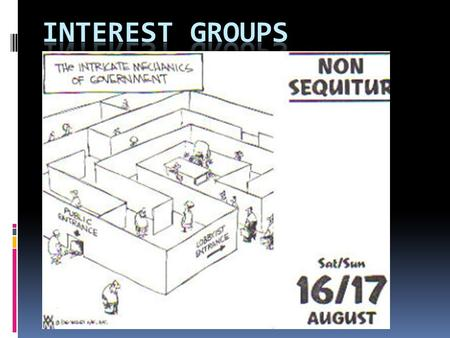 Interest Group are:  Organizations composed of individuals who share one or more interests in common and who have formed an association for their purpose.
