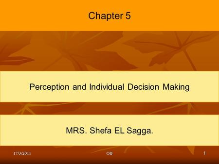 1 Chapter 5 Perception and Individual Decision Making MRS. Shefa EL Sagga. 17/3/2011OB.