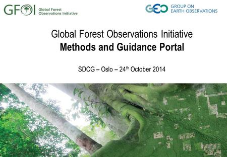Global Forest Observations Initiative Methods and Guidance Portal SDCG – Oslo – 24 th October 2014.